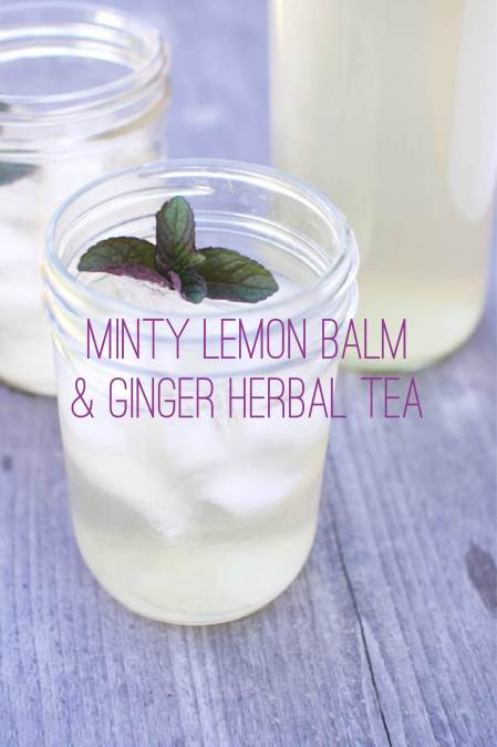 Minty lemon balm & ginger herbal tea